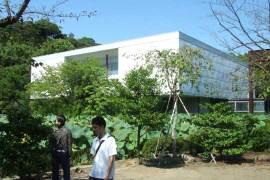 Kanagawa01b
